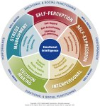 Emotional Intelligence Assessments